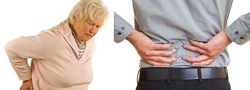 Lower Back Pain Treatment and Support